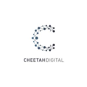 cheetah 300