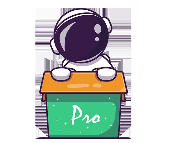 Email Pro header